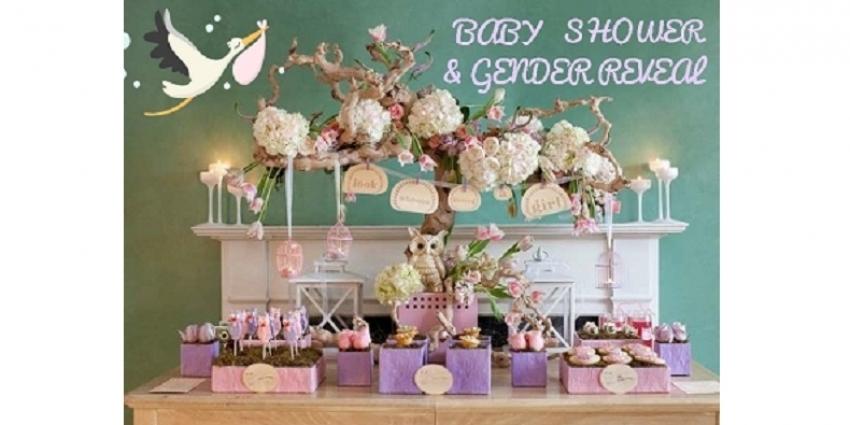 baby shower o gender reveal